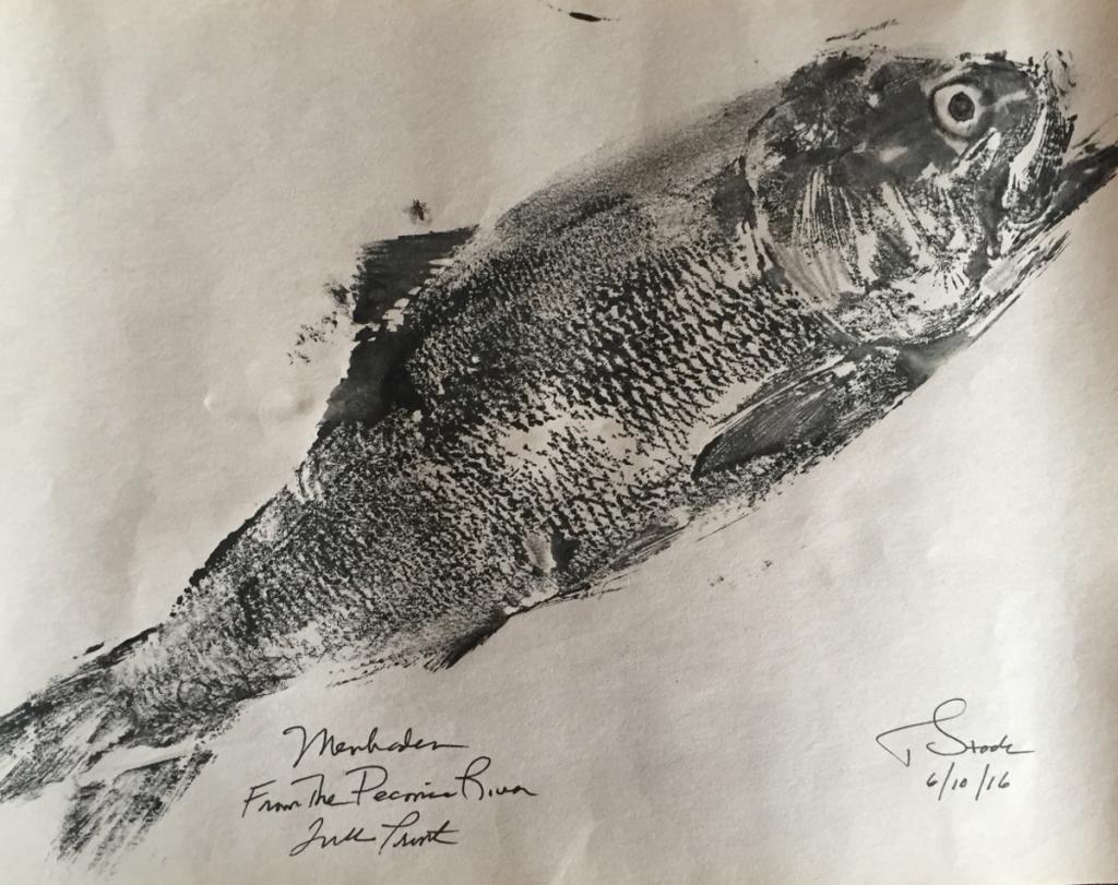 fish-print